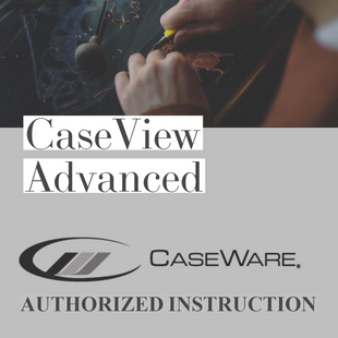 CaseWare CaseView | Advanced