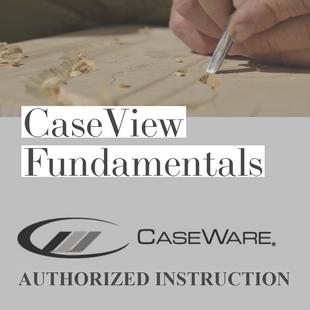 CaseWare CaseView | Fundamentals