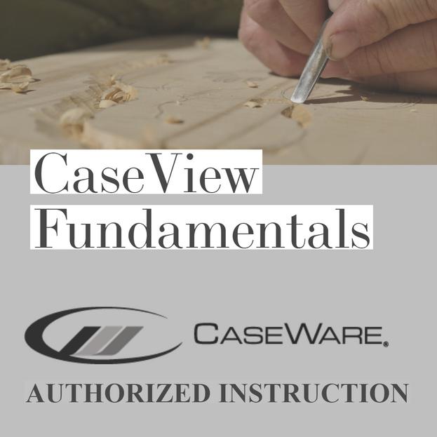 CaseView Fundamentals