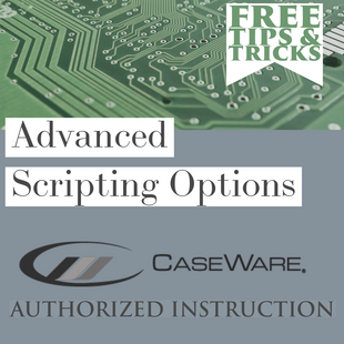 Advanced Scripting Options for CaseWare | Tips & Tricks