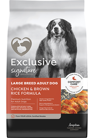 Exclusive Large Breed Adult