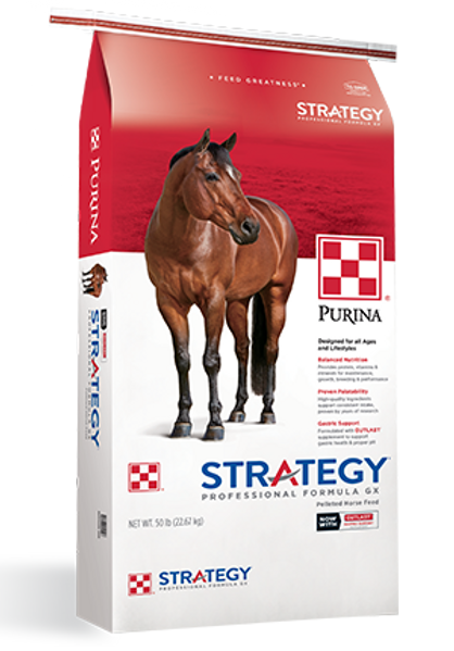 Strategy GX