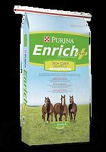 Enrich Plus