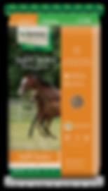 SafeChoice Mare & Foal