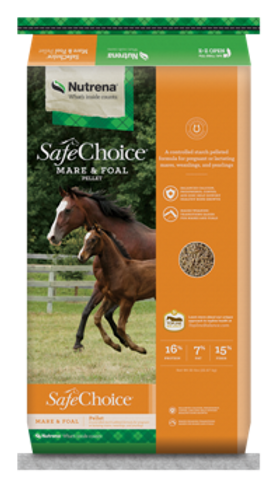 SafeChoice Mare & Foal