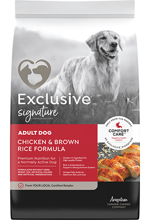 Exclusive Chicken & Rice Adult