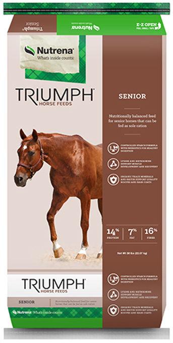 Triumph Senior
