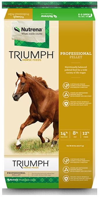 Triumph Professional