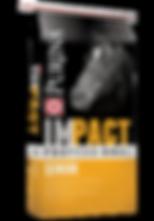 Impact Professional Senior