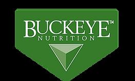 buckeye logo.webp