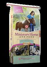 Miniature Horse & Pony