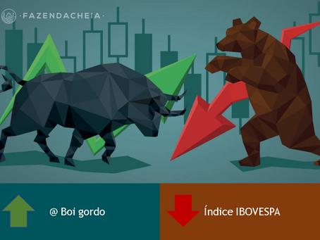 7 motivos para diversificar investindo em gado pela Internet
