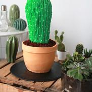 Kaktus Motivtorte