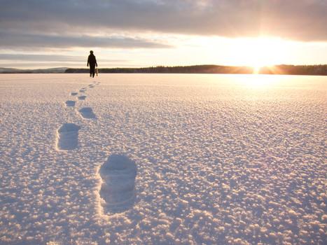 walk the icecap in front of aurora safar