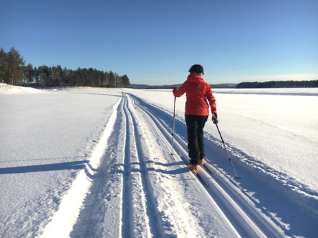 nordic skiing in tracks around the camp.