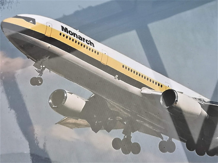 Monarch DC10 canvas 60x40cm