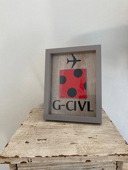 G-CIVL skin section from vertical stabiliser - framed