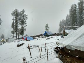 Campin'Wild - Snow