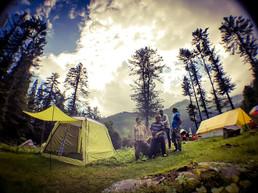 Campin'Wild