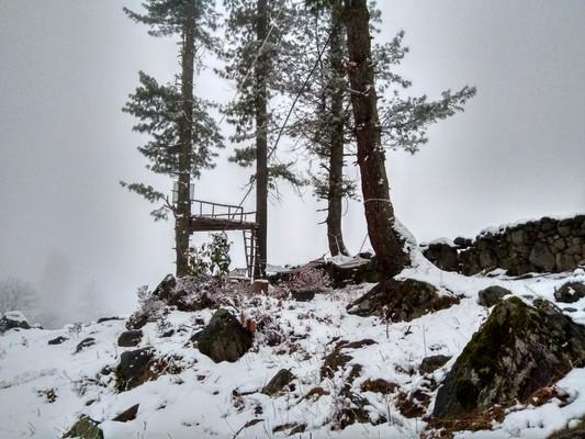 Campin'Wild - Machaan - Snow