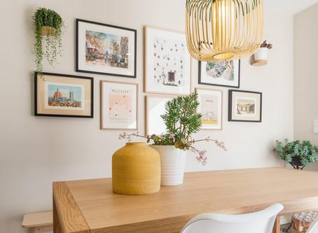 Sabe quais são as melhores plantas de interior?