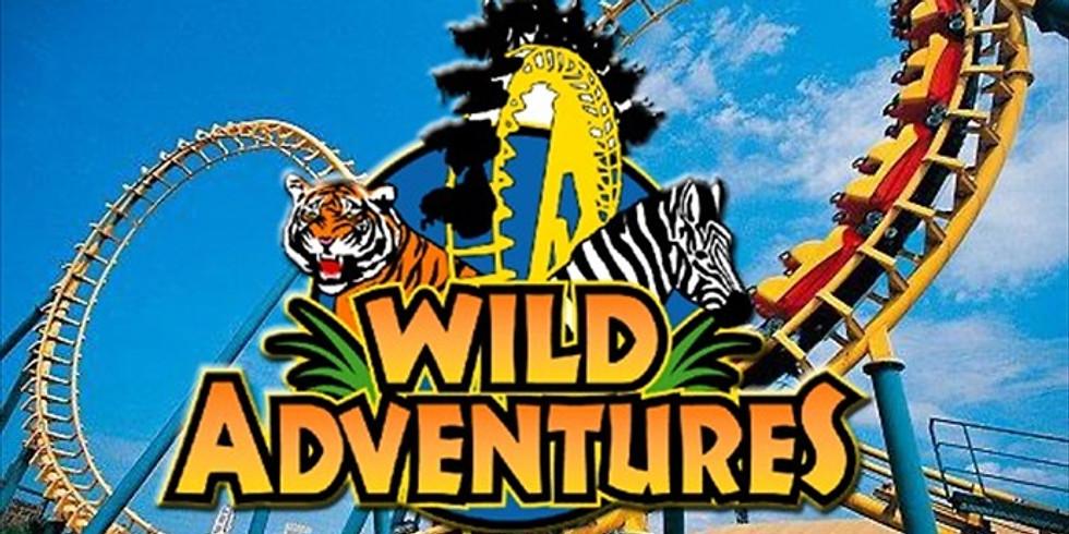Wild Adventures Amusement Park