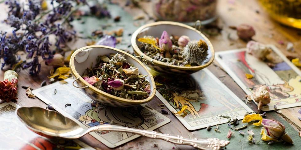 Workshop - Tea & Tarots