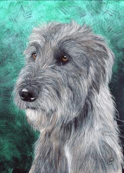 5x7dylan+wolfhound.jpg