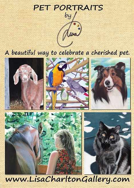 Pet Portraits by Lisa Charlton