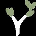 Logo Arbre Blanc 25cmx25cm.png