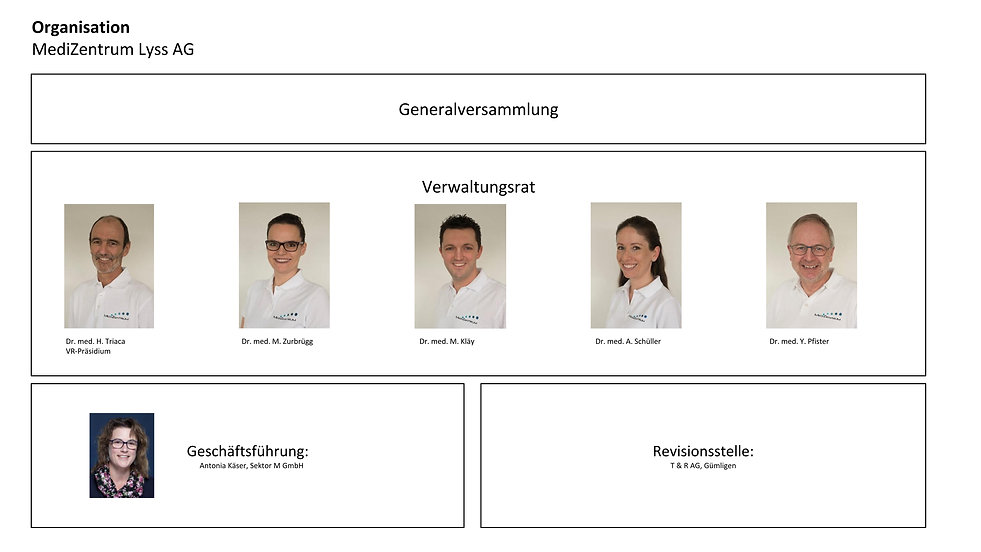 Organisation MZLyss.jpg