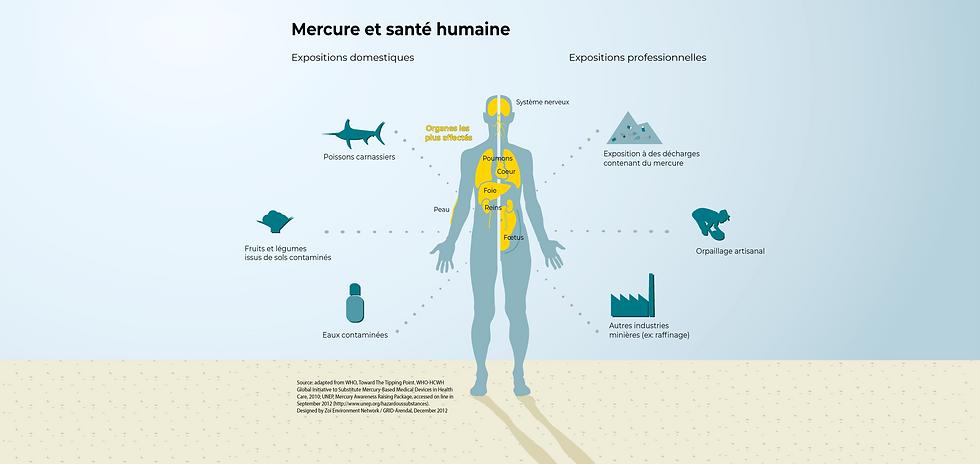 mercury-and-human-health_ecfb2-01-01.png