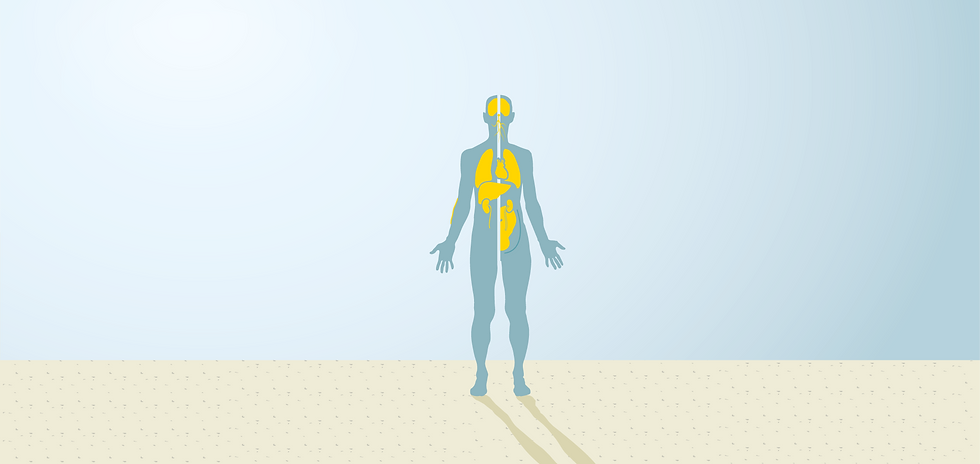 mercury-and-human-health_ecfb vide-01.pn