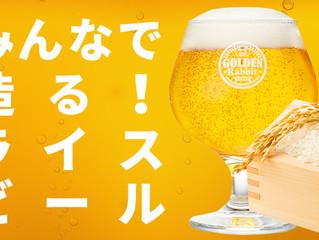 ひのひかりビール納品