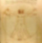 2  1 2019-09-02 16_34_18-homme de vitruv