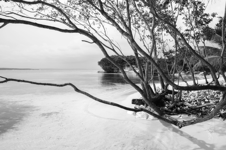 Ilhas Saonas