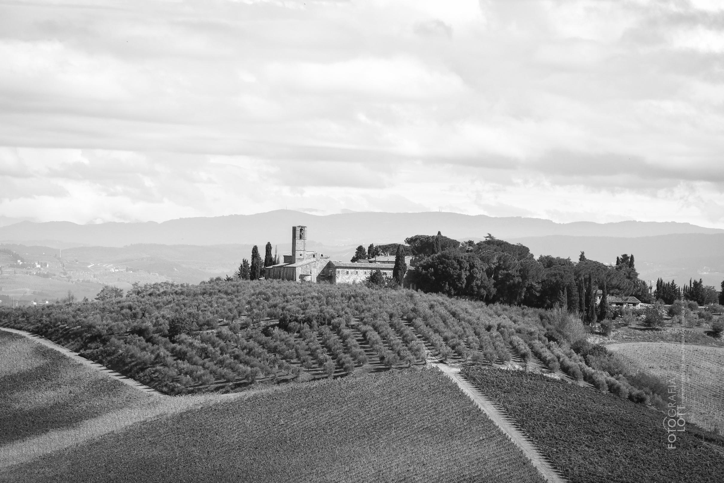 Montalcino - Itália
