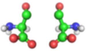 Amino Acids.png