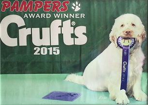 crufts 2015