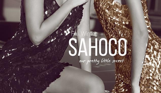 Sahoco Image.png