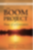 Boom Project cover.png
