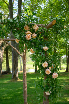 new-england-outdoor-wedding-planner-stor