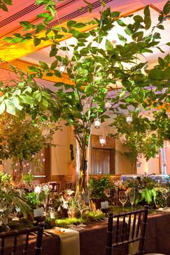 ballroom-forest=new-england-luxury-weddi