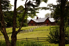 new-england-destination-wedding-planner