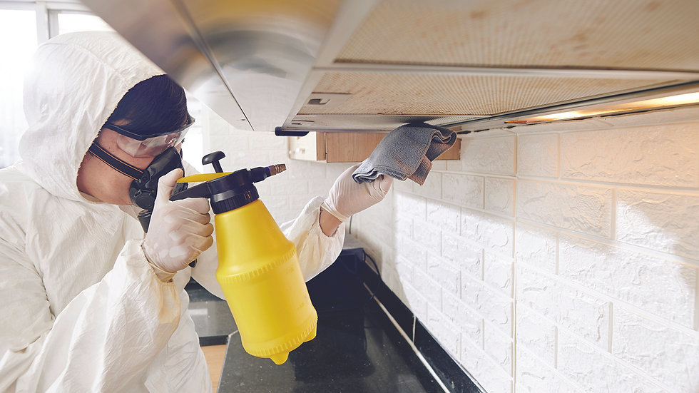 cleaning-service-worker-spraying-deterge