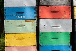 Beekeeping boxes stacked and ready to be