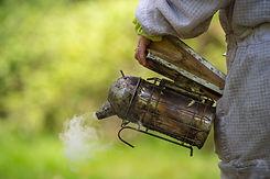 Old bee smoker, Beekeeping tool, Sring i