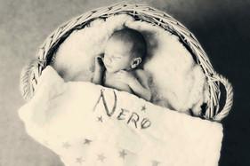 Nero  (40)bw.jpg
