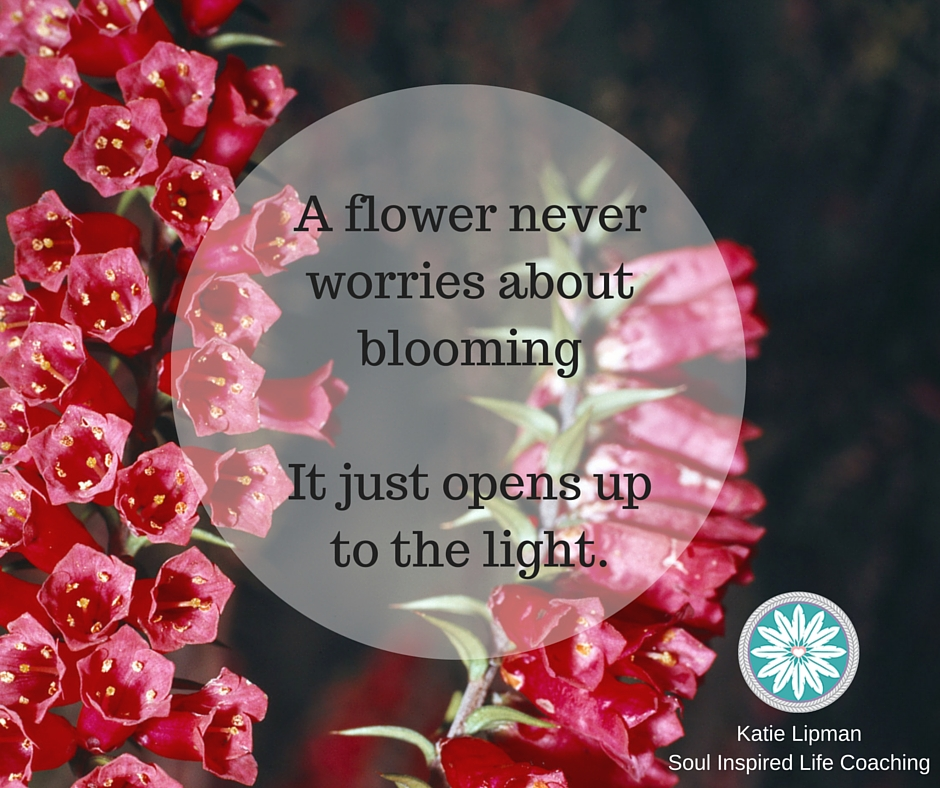 A flower never worries about bloomingIt