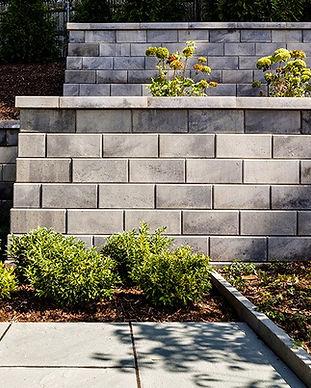 gforce wall.jpg